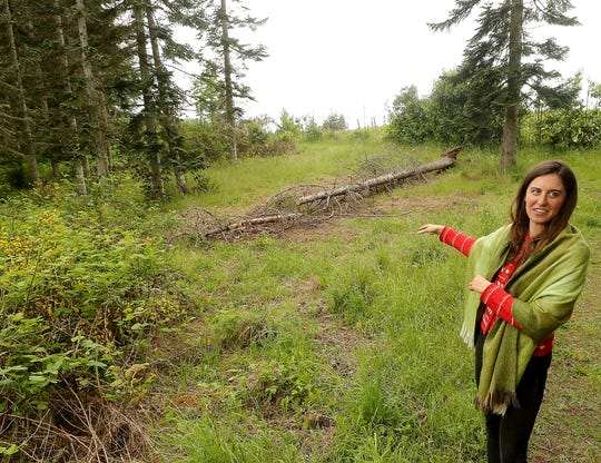 "Alessandra Pistoia, project manager for the Bainbridge Food Forest, talks about the invasive plants that have been removed and the clearing that will be done to create an ""edible"" park at the M&E Farm property."