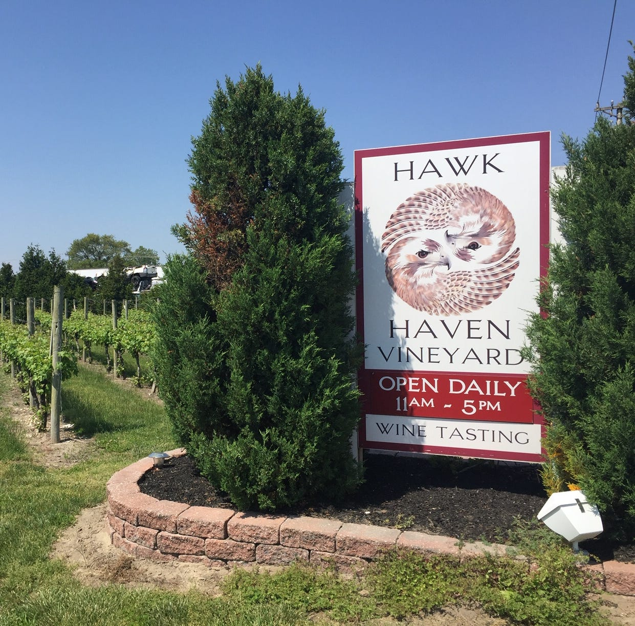 Hawk Haven vineyard celebrates milestone with music, food truck festival