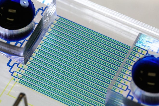 HydroSeq, a new microfluidic chip designed to catch circulating tumor cells (CTCs) and isolate their RNA in order to develop better cancer treatments, was designed by University of Michigan engineering researchers.