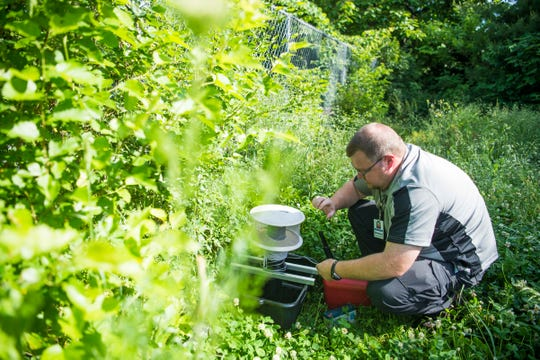 Knox County Health Department environmental technician Chris Winchester sets up a Gravid trap, which catches mosquitoes, in Knoxville on May 21, 2019. KCHD regularly tests mosquitoes in the city and county for disease throughout the warmer months.
