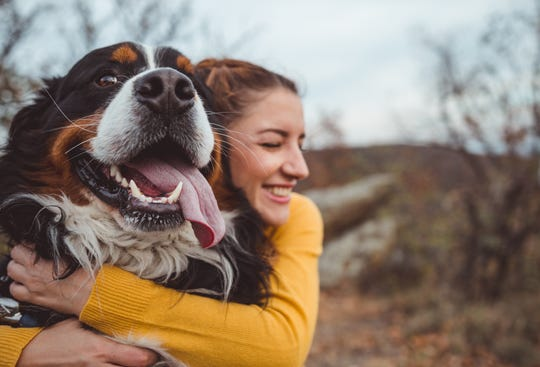 Thanks to a mix of anecdotal observation and early studies, CBD might have an emerging place in veterinary medicine.