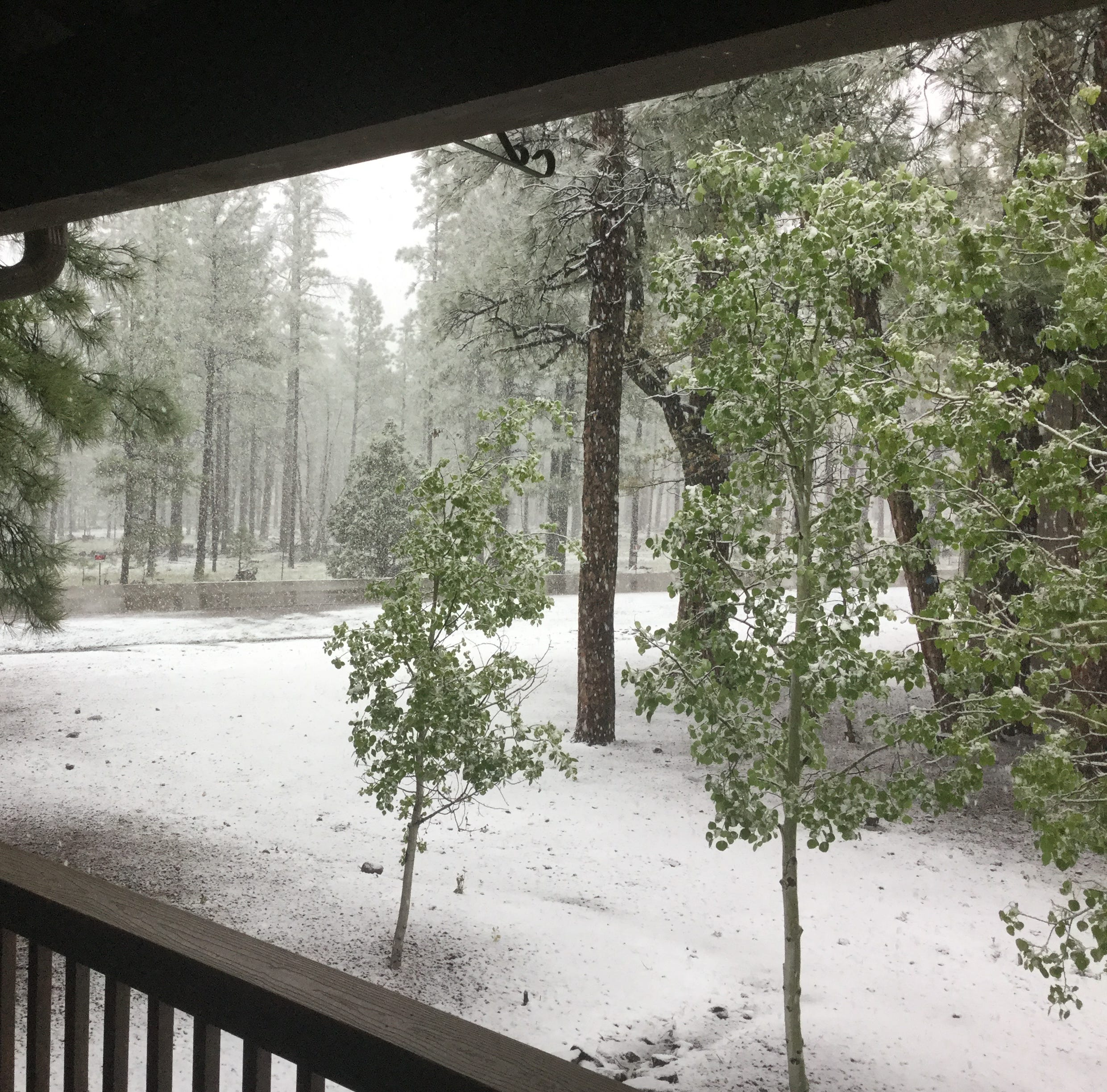 Storm brings wind, rain, hail and snow — and really cool temperatures to Arizona
