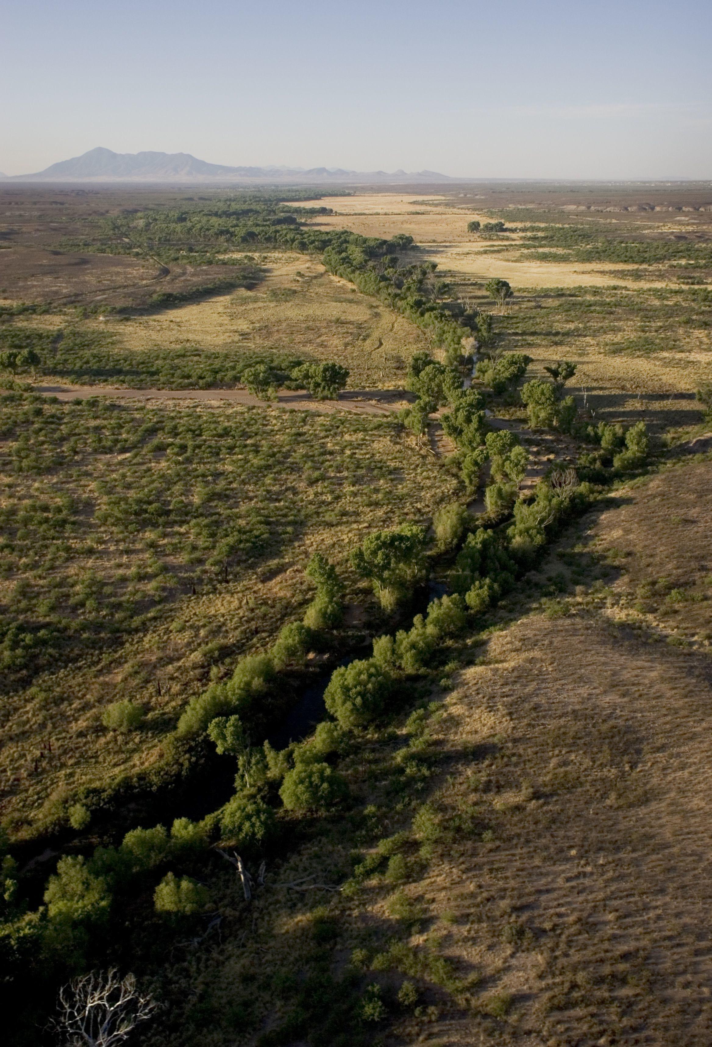The San Pedro River snakes its way through the desert east of Sierra Vista in southeastern Arizona.