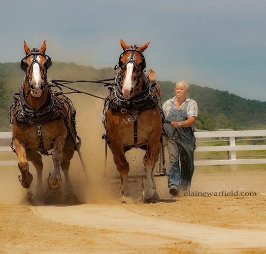 The 25th annual Horse Pulling Contest will be held during Union Vale's Community Day June 1 at Tymor Park.