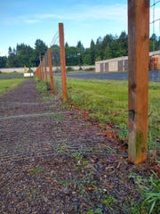 The generator was being stored in a locked and fenced area within the dog-walking yard, Willamette Humane Society executive director BJ Andersen said.