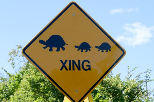 A turtle crossing sign installed by the Rockland County Highway Dept. on Western Highway in West Nyack May 21, 2019.