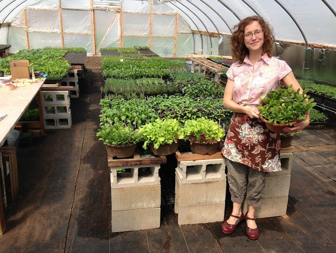 Sheri Doyel of Tiny Tempest Farm, in Lake Geneva, specializes in organically grown vegetabel, herb and flower plants for the avid home gardener.