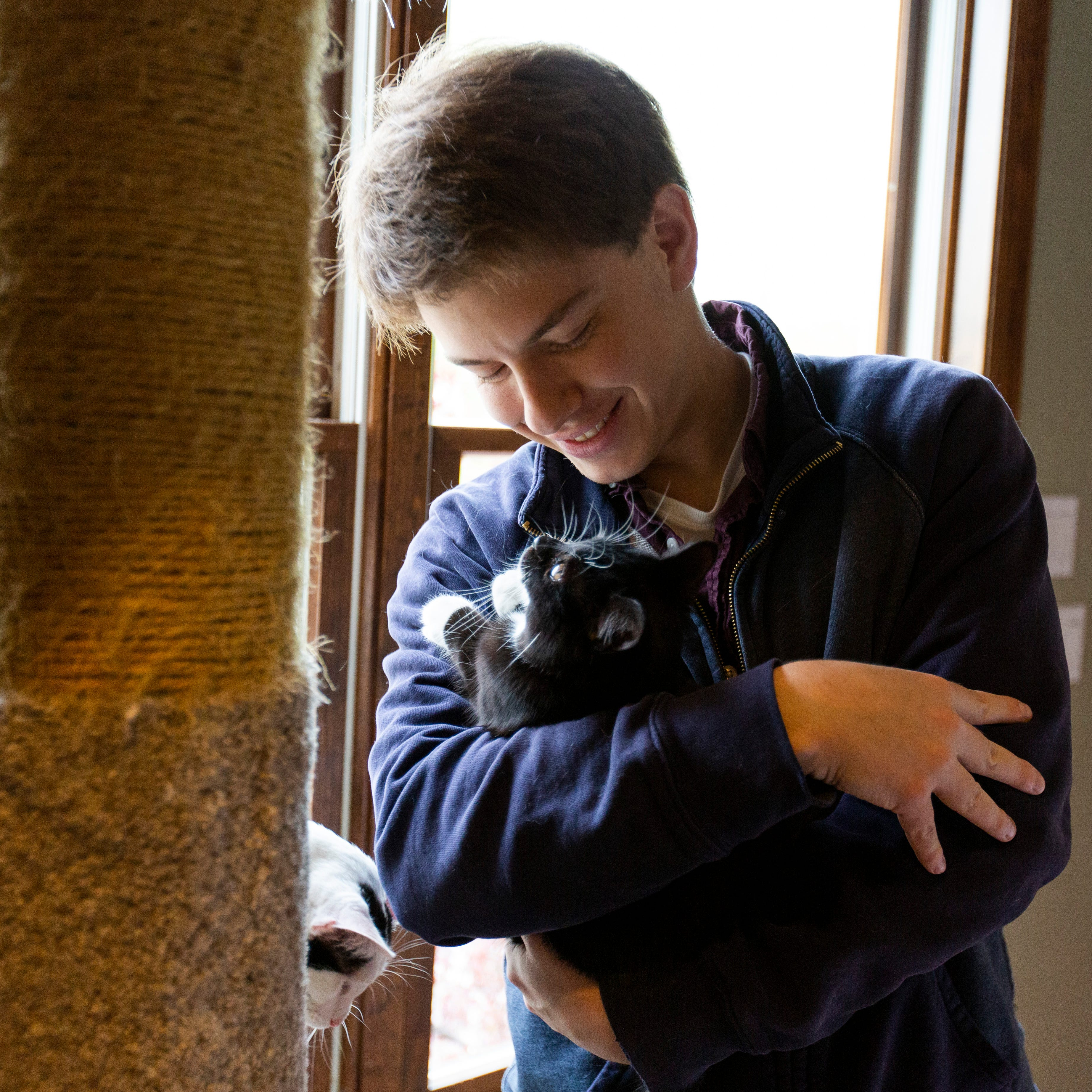 Cat magnet: California man returns to Wisconsin to adopt two kittens to succeed Bastet