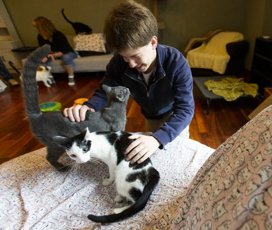Kevin Graves of San Diego greets kittens at Almost Home Kitty Rescue in Vinland. Graves lost his cat, Bastet, in the Interstate 41 pileup in February. Almost Home allowed Graves to adopt two kittens to take home to California.