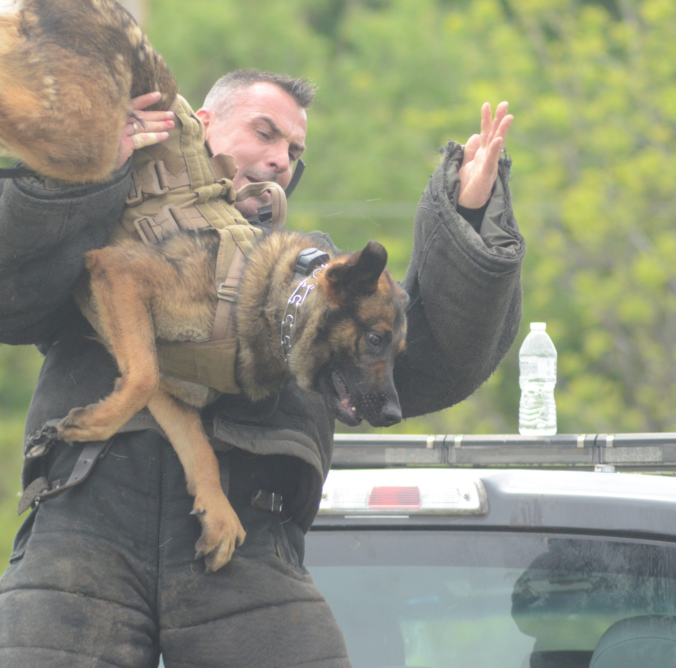 Police dogs and handlers train in 'high stress' scenarios; public demonstration Thursday