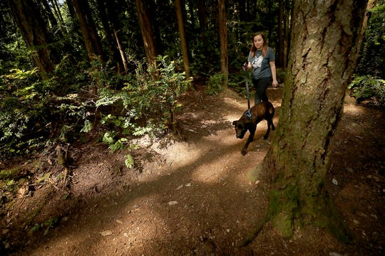 Kitsap Humane Society's Janie Cordova walks Mr. Darcy, a 3-year-old brown brindle pit bull up for adoption, along one of the trails at the shelter on Wednesday. A new program at the shelter will allow members of the public to take dogs on outings and even overnights.