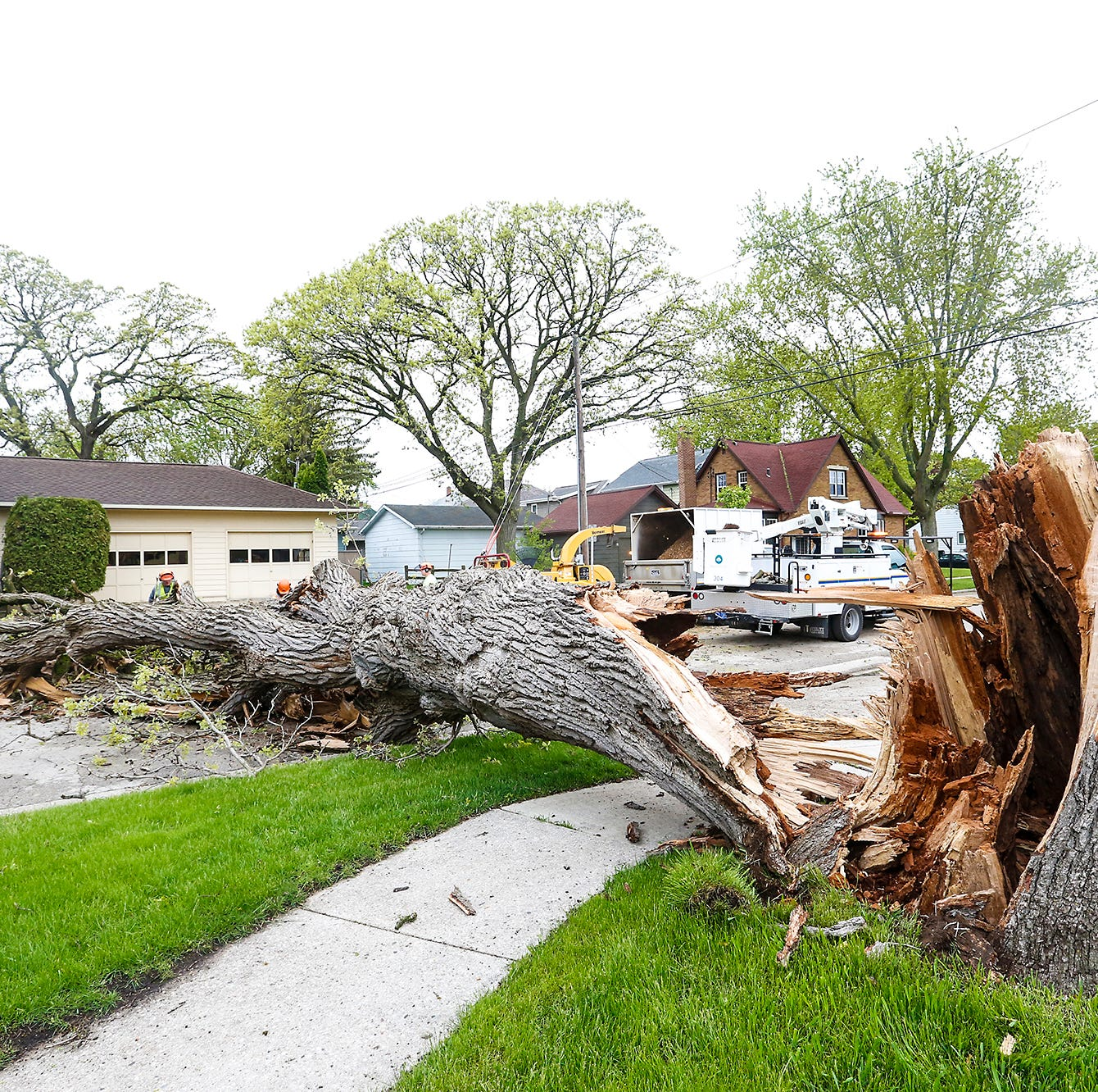 What's a wake low? It's what caused damage to Fond du Lac trees, power lines Wednesday