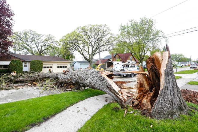 City of Fond du Lac Department of Public Works crews work to clear a tree that was blown down Wednesday, May 22, 2019 on McKinley Street just north of Johnson Street. High winds overnight caused sporadic damage across the city and county.