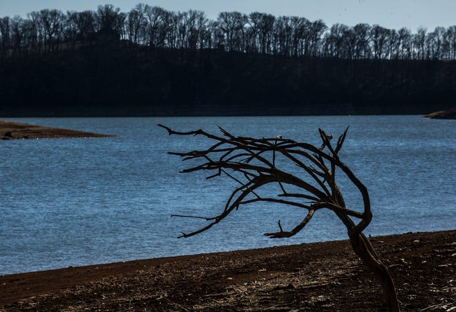 Authorities in Hamblen County recovered a man's body from Cherokee Lake on Tuesday evening in what investigators said appears to be an accidental drowning.