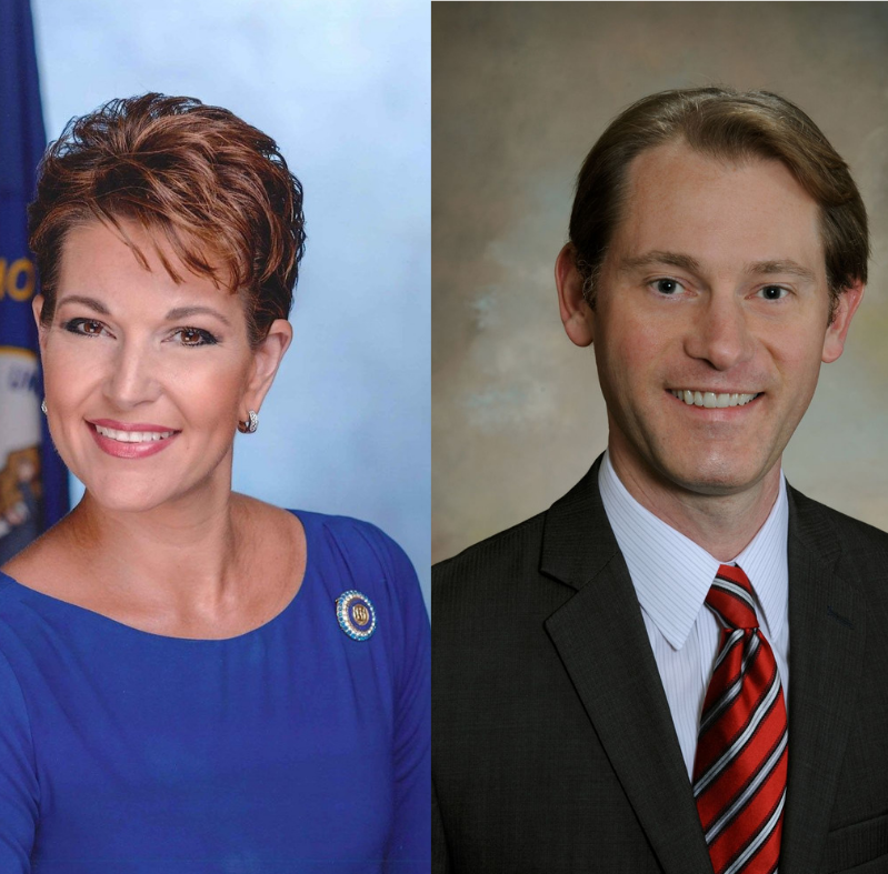 Heather French Henry and Michael Adams win secretary of state primary races