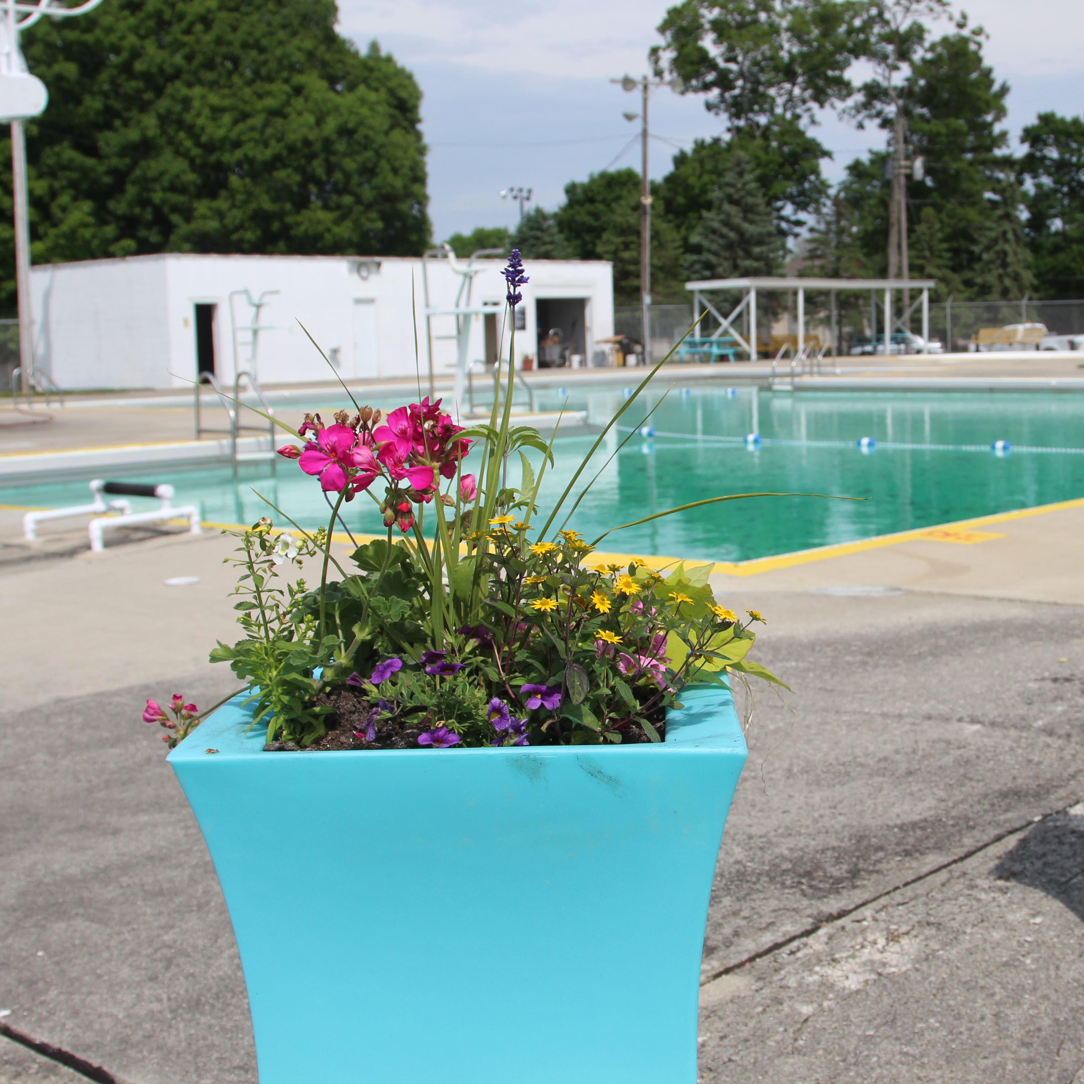 Prospect's pool gets makeover ahead of 60th birthday