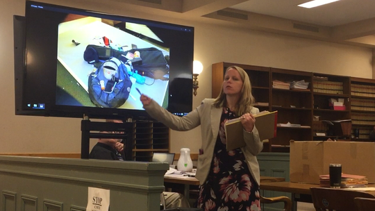 Cumberland County Assistant Prosecutor Lindsey Seidel points out for jurors details of a photo from a 2016 murder scene during opening testimony Tuesday in Superior Court. Larry J. Pulcine is the defendant, charged with killing a sleeping co-worker.