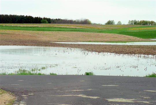 Lots of new ponds have been created this spring on farmland.