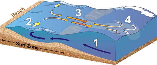 Anatomy of a rip current