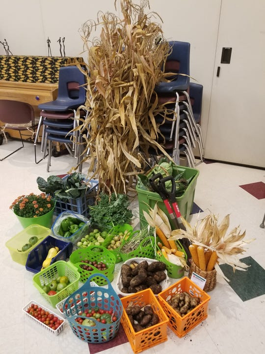 Last fall, Ferndale's Public Schools Upper Elementary's garden yielded dozens of vegetables, including tomatoes, squash, potatoes, tomatillos, and kale.