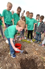 First grader Wyatt Spence, 6, of Holly, collects a dirt sample in the school garden at Patterson Elementary in Holly.
