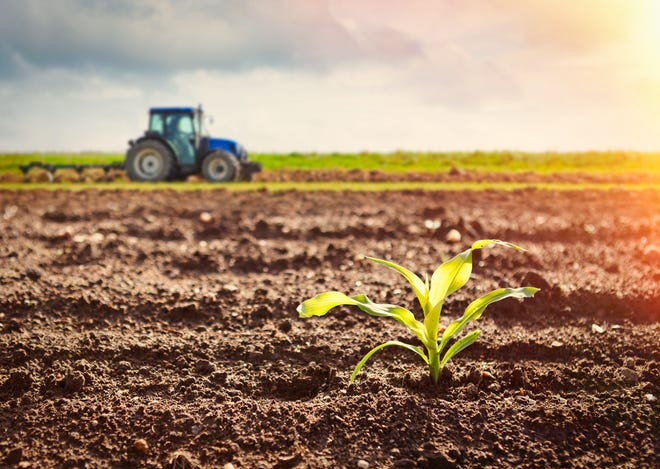"""Farmers are the first to promote keeping fertilizer on the land and out of waterways, said Erica Rogers, environmental management educator with the Gratiot County Michigan State University Extension Office. """"You'll hear the saying manure is money."""" Nutrient runoff, she said, """"is like watching money going down the drain – literally."""""""