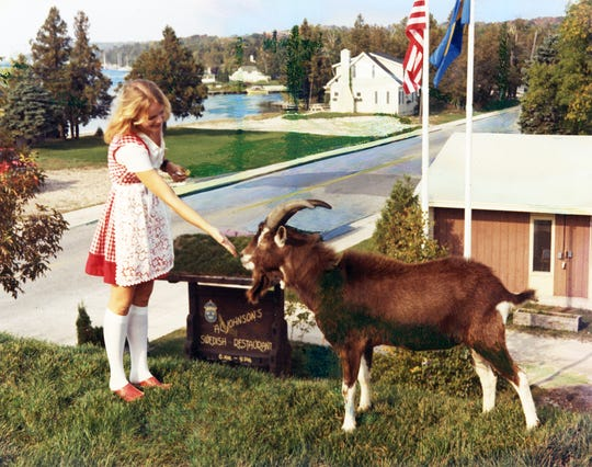 Al Johnson's Swedish Restaurant & Butik, known for having goats on its roof, will hold an event celebrating its 70th anniversary in business on Saturday. Shown in this picture from 1973 are Gunilla Wilson and the restaurant's first goat, Oscar.