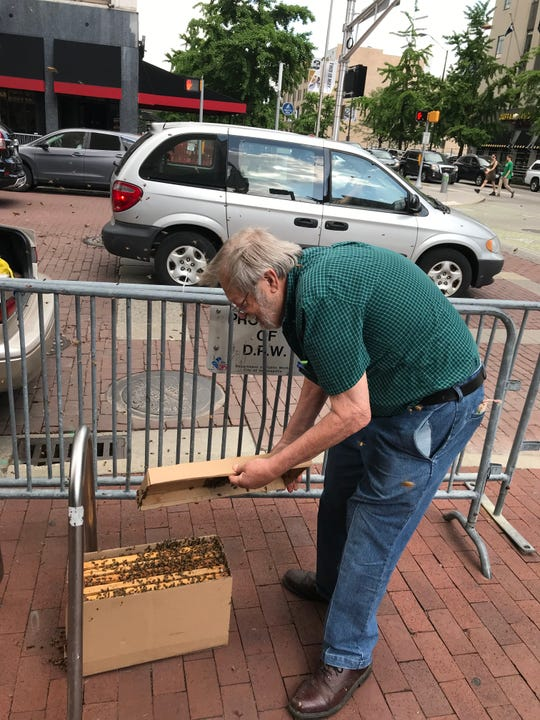 Jerry Zimmerman packed up a swarm of bees and took them home with him.
