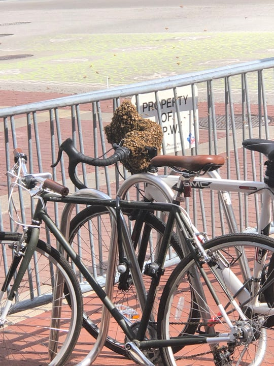 Bees swarmed a bike in Downtown Indianapolis on Thursday, May 23, 2019.