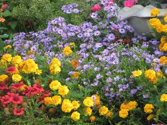 The backyard garden of Larry and Janet Rogers is bursting with color.