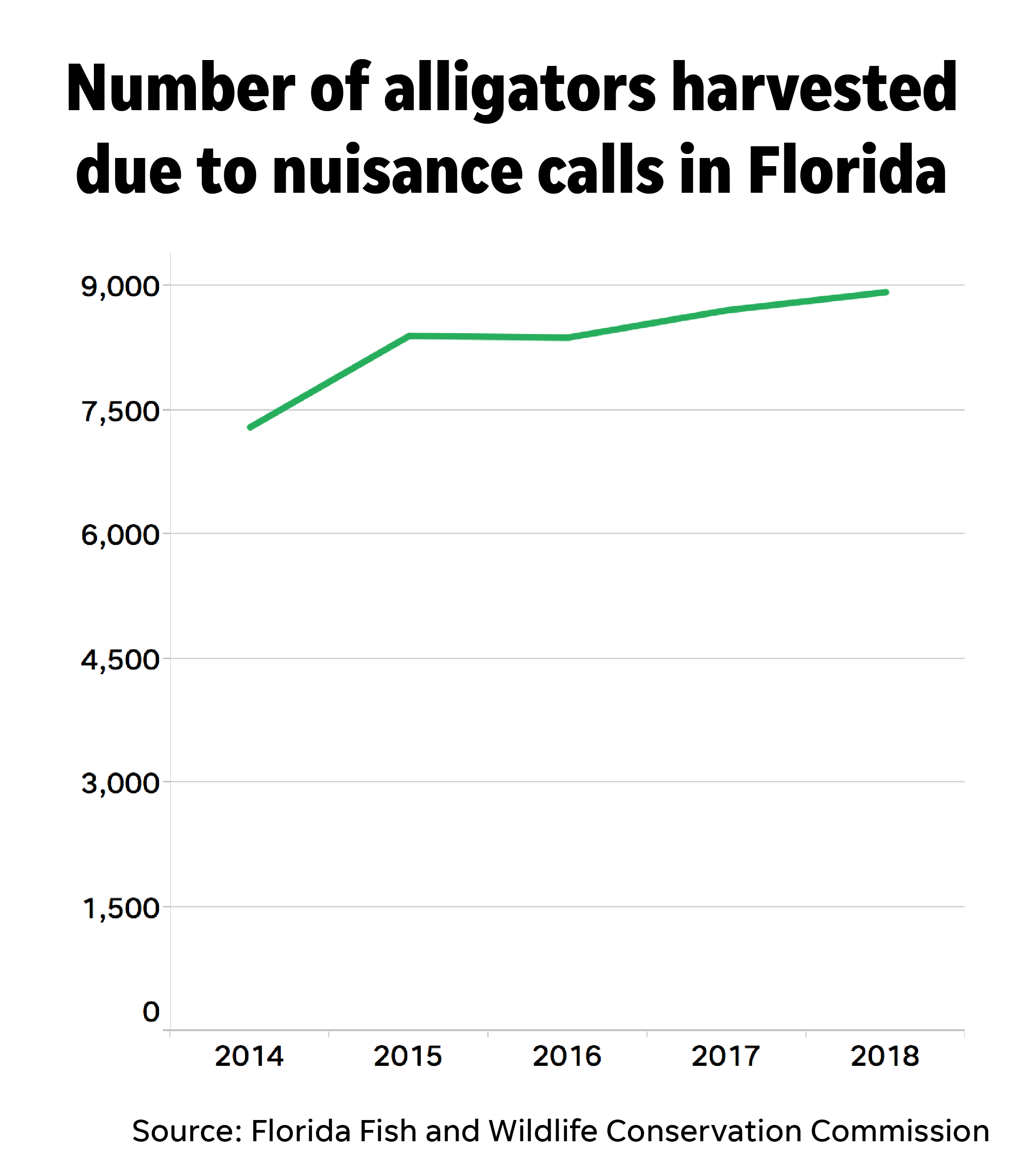 Alligator attacks rare in Florida, but nuisance gator