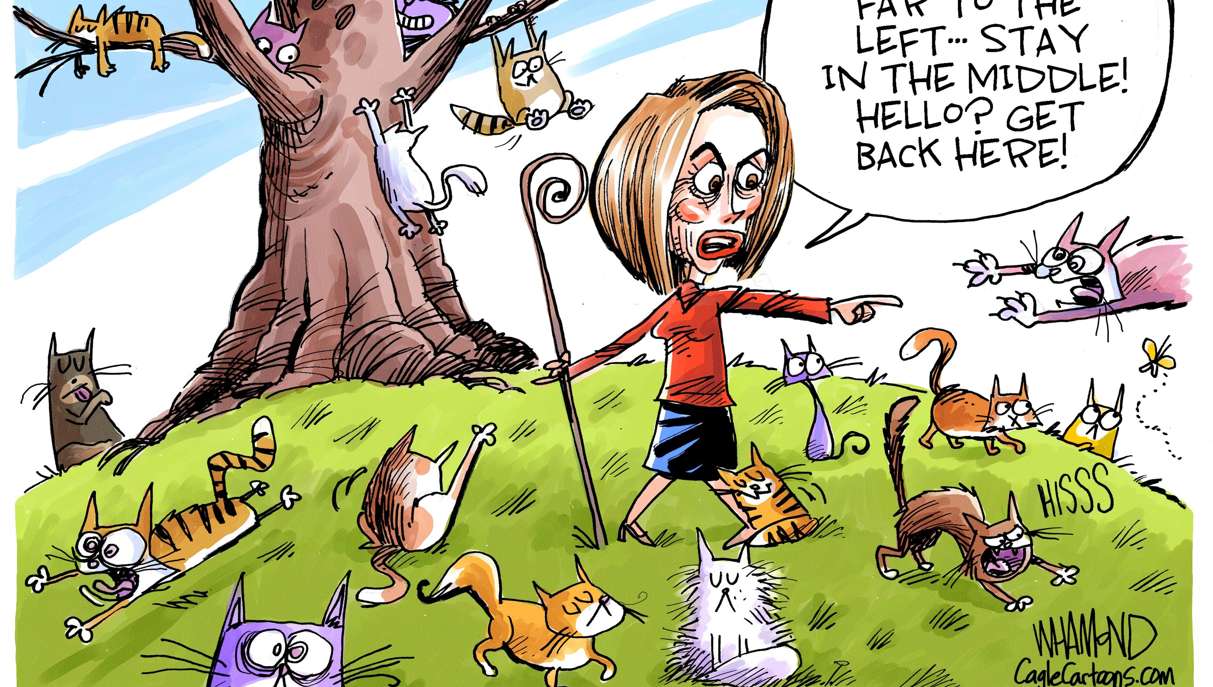 LEDE cartoon: Pelosi herds cats.