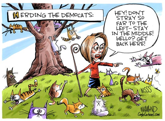 LEDE cartoon: Pelosi herds cats.