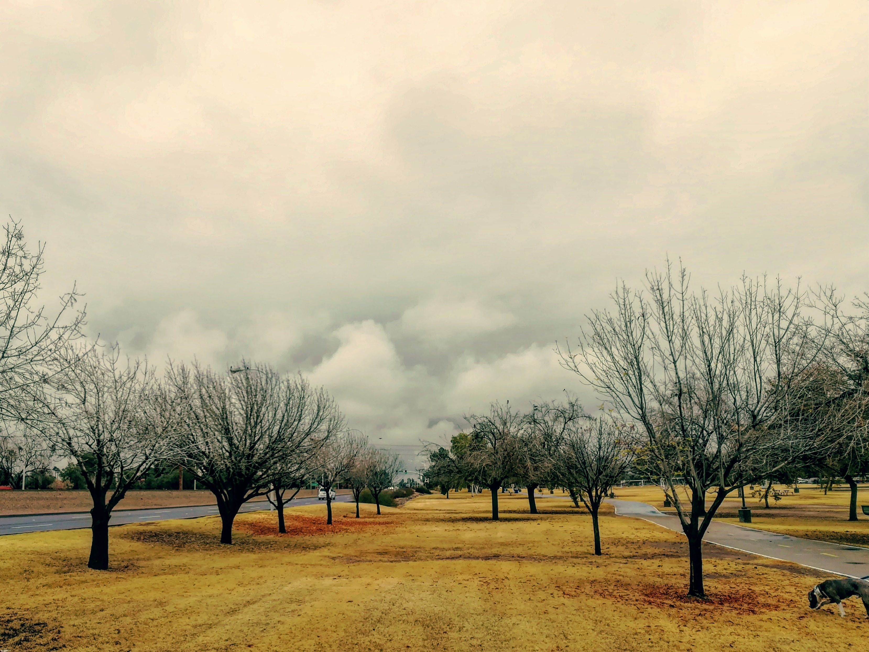 Low clouds bring rain and cool temperatures to south Scottsdale.