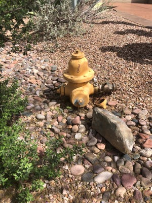 A fire hydrant in Carefree buried extremely low to the ground. Issues with fire hydrants are just one problem Carefree residents are having with their current water system.