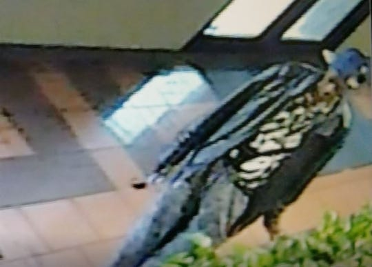 The Shreveport Police Department is asking for help in identifying a man believed to have taken plants from a Texas Street business on April 24.