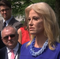 "White House counselor Kellyanne Conway is taking verbal jabs at House Speaker Nancy Pelosi following a White House meeting that dissolved into rancor, Wednesday.  Conway said Pelosi treated her ""as she might treat her maid"" during the exchange. (May 23)"