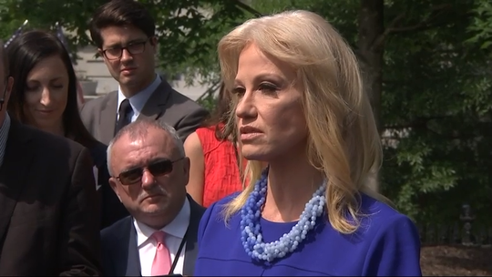 White House counselor Kellyanne Conway takes verbal jabs at House Speaker Nancy Pelosi after a White House meeting that dissolved into rancor last month.