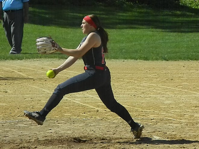 Dunellen's Elizabeth Renavitz pitches against Point Beach during the Central Group I final on Friday, May 24, 2019.