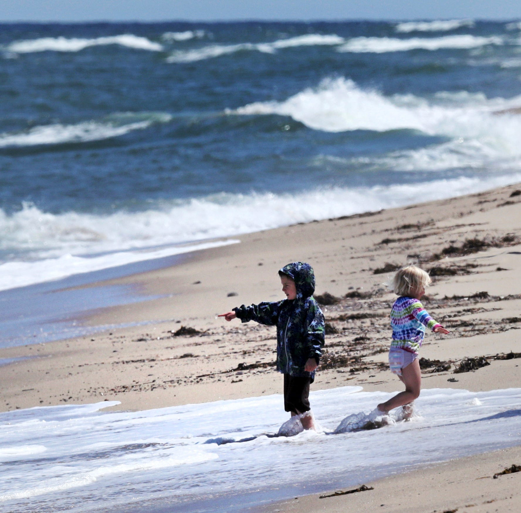 Shark attacks overshadow Cape Cod tourist season