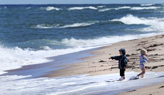 This season has brought reports of shark attacks from Cape Cod to North Carolina shorelines.