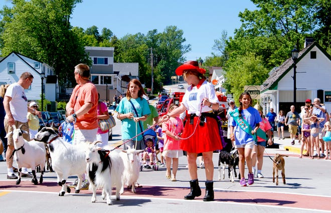 Goats march through Sister Bay on their way to the sod roof of Al Johnson's Swedish Restaurant for the Roofing of the Goats Parade and Goat Fest.