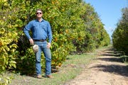 Selwyn Justice, a fourth-generation farmer in the West Valley, says he sees a future for citrus farming in the state despite development and other challenges.
