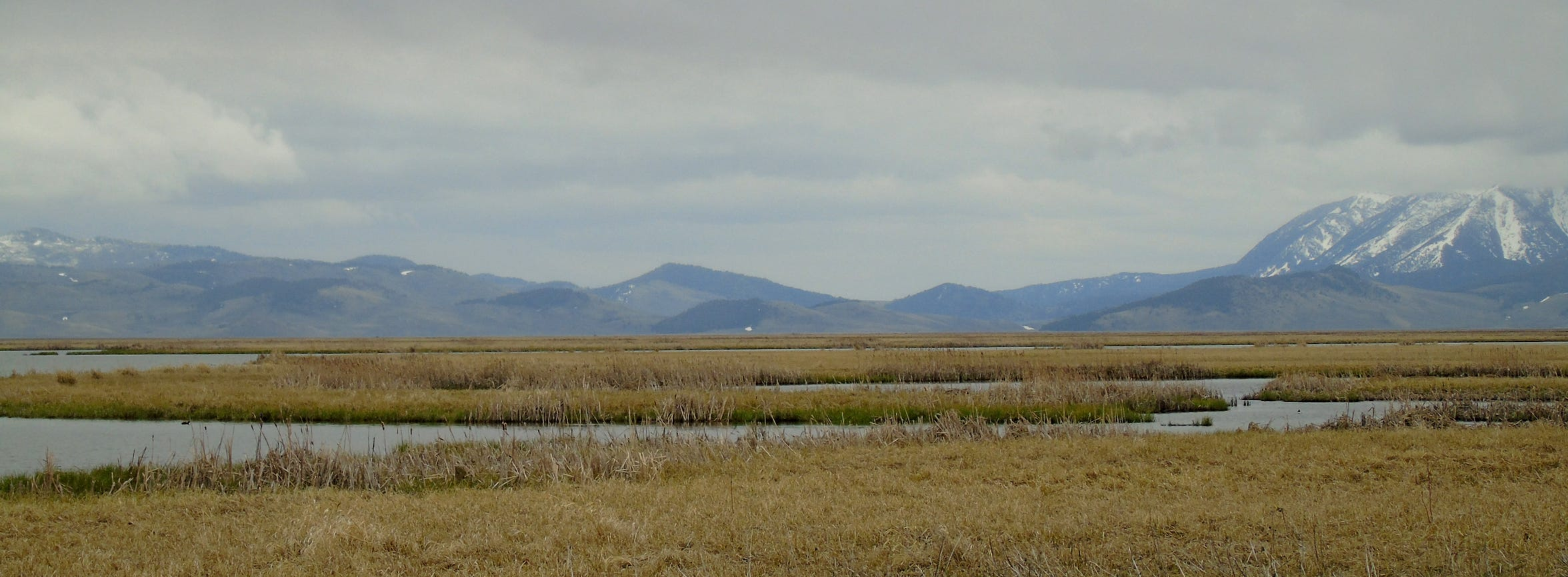 Red Rock Lakes National Wildlife Refuge in Montana's remote, high Centennial Valley southeast of Dillon.
