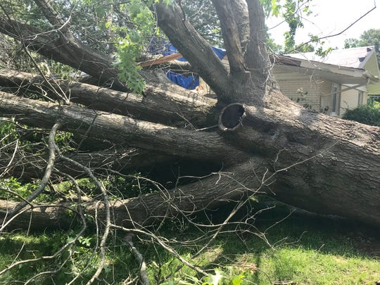 A huge tree fell across Brenda Eyman's front yard and part of her house on East Southern Hills Boulevard.
