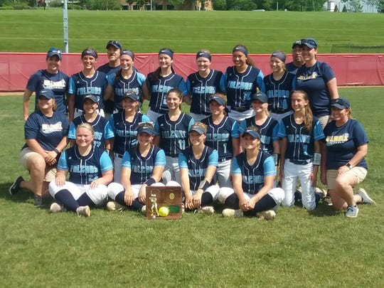Hillsdale Falcons are Division IV regional champs.