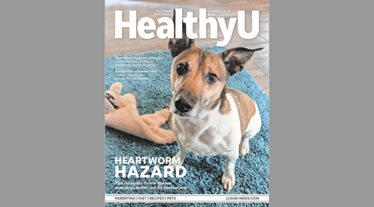The Summer 2019 Healthy U magazine cover