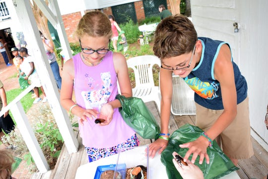"The 11th annual Bug Day, hosted by Kent House and the U.S. Forestry Service, was Saturday, June 2, 2018 at Kent Plantation House. Visitors were able to touch some insects such as the Madagascar hissy cockroach as they learned about various insects and reptiles at the event. They were also able to eat bugs such as crickets and mealworms which were in dishes such as Rice Krispies Treats, chocolate chirp brownies and honeybutter hot and spicy mealworm. After eating the treats, visitors earned an ""I Ate a Bug"" button."