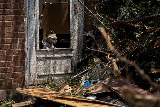 Dudley looks out of his home that was destroyed by tornadoes that touched down in Brookville, Ohio Tuesday, May 28, 2019.