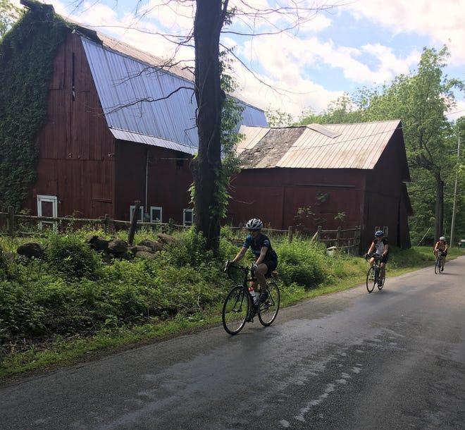 Riders enjoy the farmlands landscape on Big Island Road